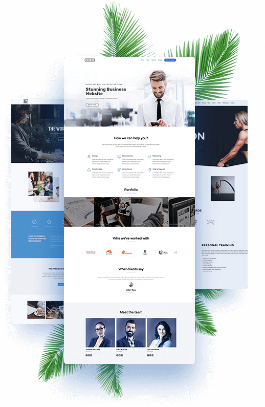 Small Business Web Design By ShyFish Designs
